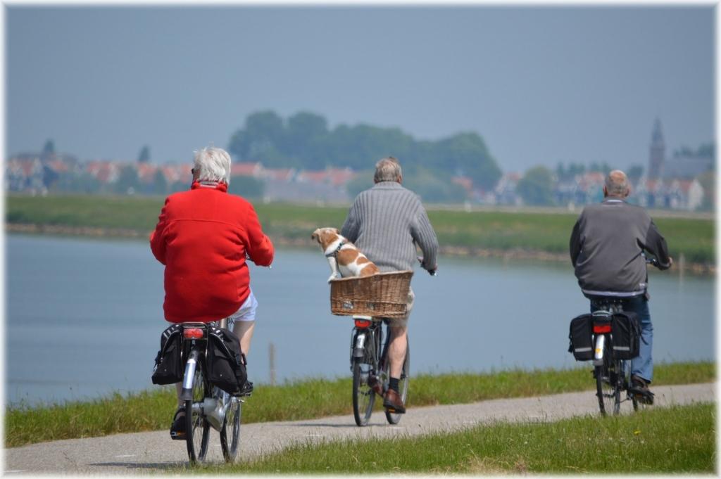 Exercises for Older Australians Physio